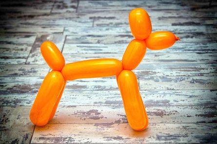 Balloon-Dog1